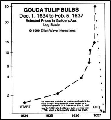 tulip_price.jpg